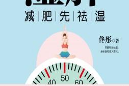 湿胖-佟彤mobi-epub-azw-pdf-txt-kindle电子书