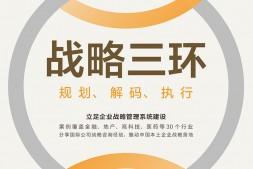 战略三环:规划解码执行mobi-epub-azw-pdf-txt-kindle电子书